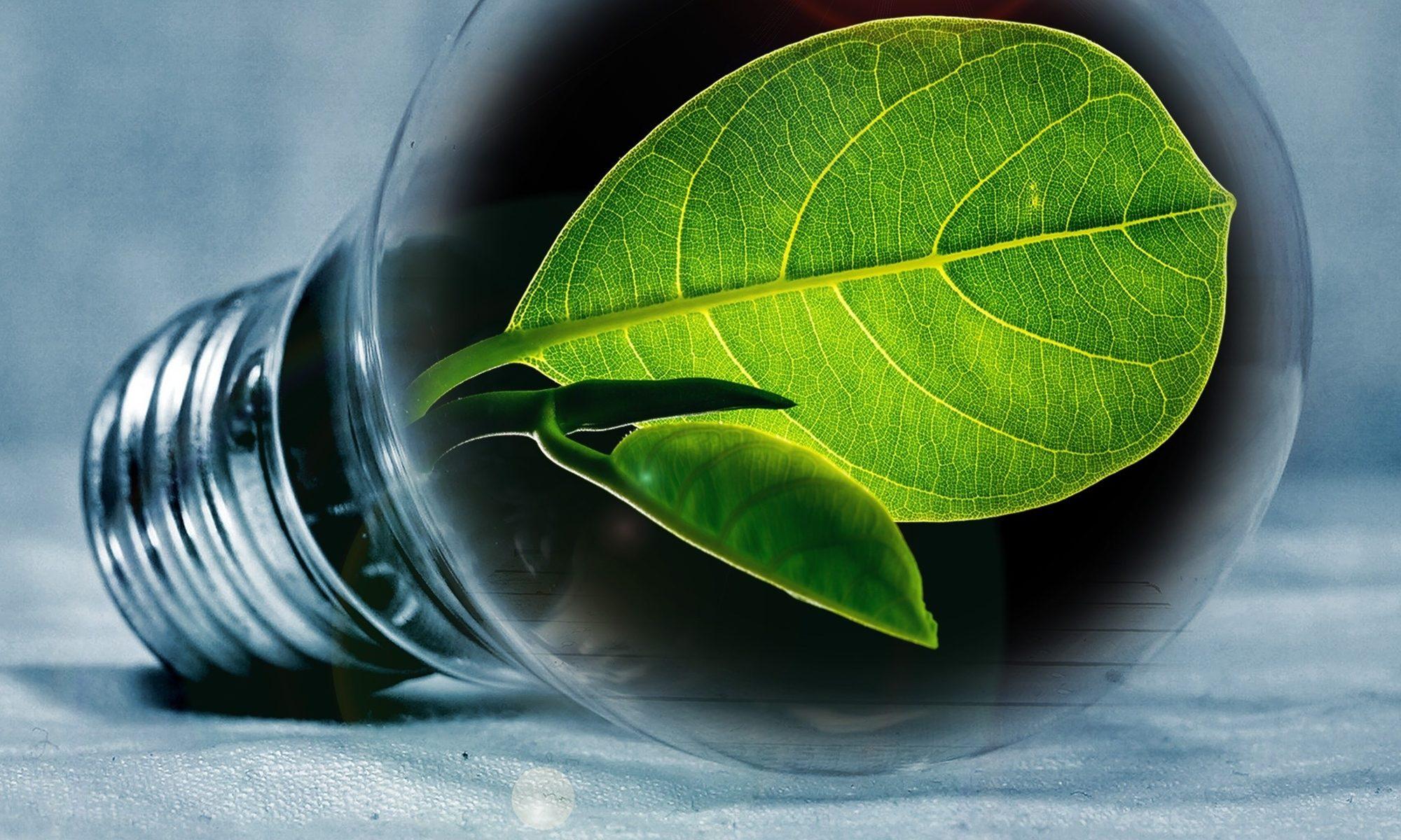 Environnement Conseils